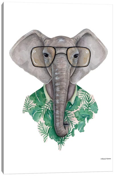 Elephant In Eye Glasses Canvas Art Print