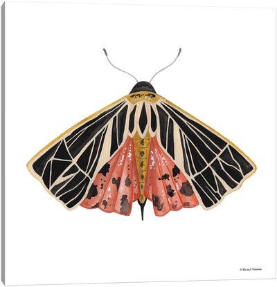 Naturally Wonderful Moth Canvas Art Print