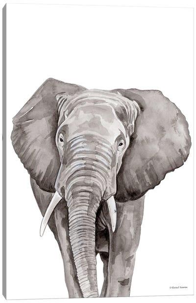 Safari Elephant Peek-A-Boo Canvas Art Print