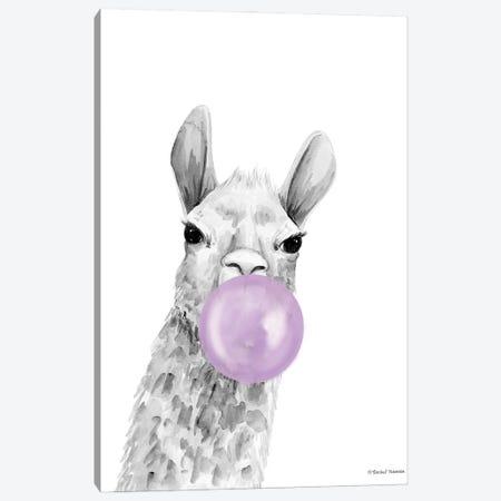 Bubblegum Alpaca Canvas Print #RNI87} by Rachel Nieman Canvas Art