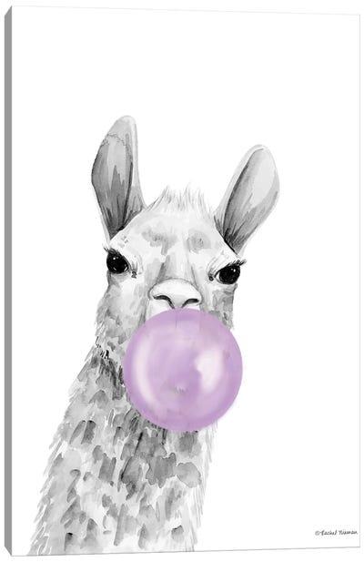 Bubblegum Alpaca Canvas Art Print