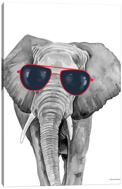 Looking Cool Elephant Canvas Art Print