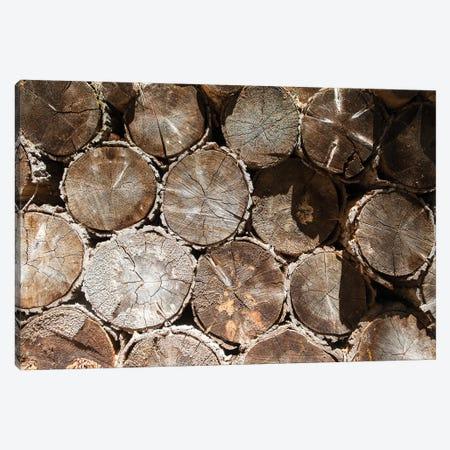 Stacked Logs Canvas Print #RNN26} by Ben Renschen Canvas Art Print