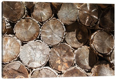 Stacked Logs Canvas Art Print
