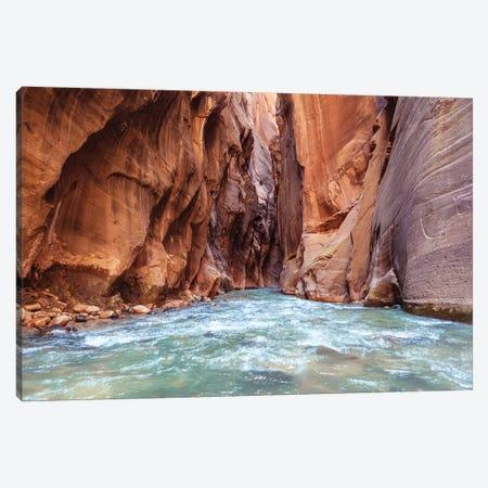 A River Runs Through Desert Canyon Walls Canvas Print #RNN27} by Ben Renschen Art Print