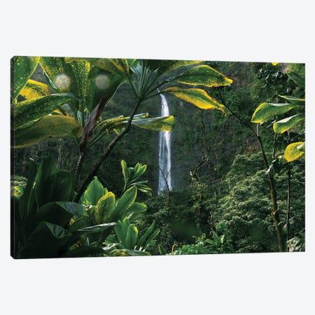 Lush Hawaiian Jungle Waterfall Canvas Print #RNN28} by Ben Renschen Canvas Art