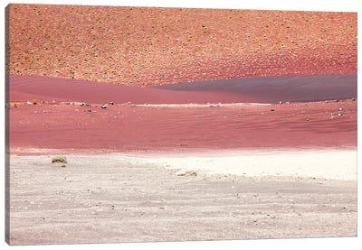 Red Sands Of California Desert II Canvas Art Print