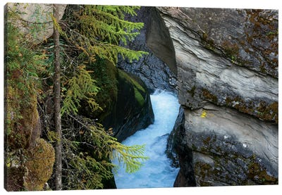 Glacial Water Flows Through Thin Canyon Canvas Art Print