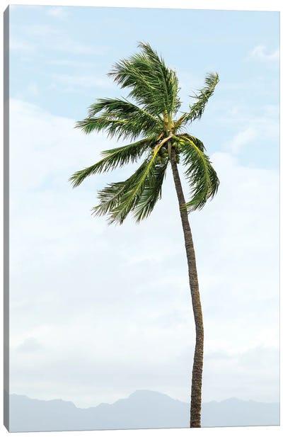 Hawaiian Palm Tree Canvas Art Print