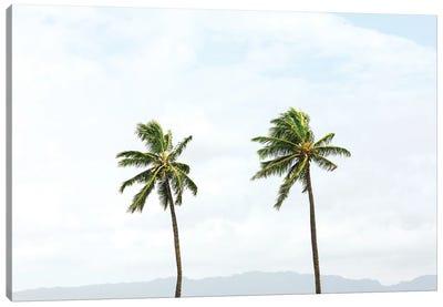Two Hawaiian Palm Trees Canvas Art Print