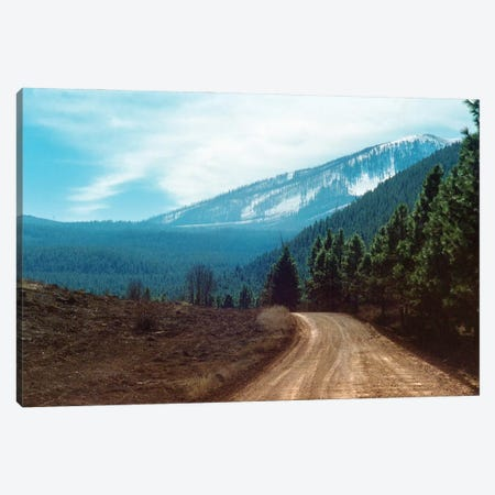 The Long Dirt Road Into The Mountain'S Forest Canvas Print #RNN5} by Ben Renschen Canvas Wall Art