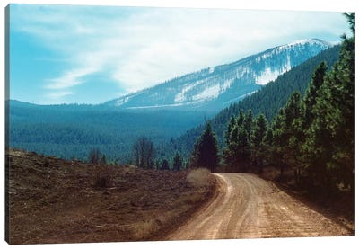 The Long Dirt Road Into The Mountain'S Forest Canvas Art Print