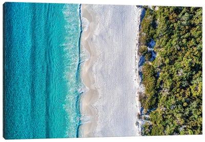 Bush, Sand, Sea Canvas Art Print