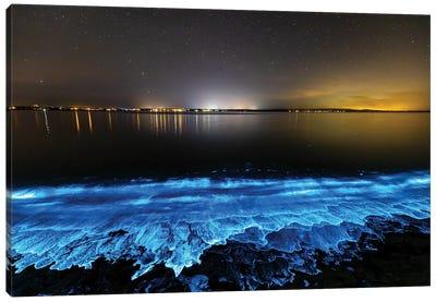 Electric Blue Bio Jervis Bay Canvas Art Print
