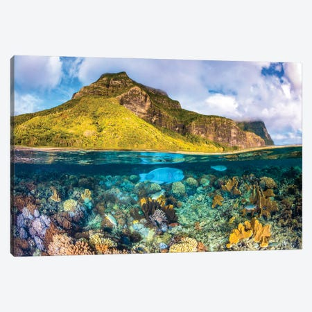 Mount Gower To The Sea Lord Howe Island Canvas Print #RNS47} by Jordan Robins Canvas Artwork