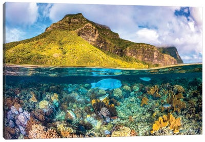 Mount Gower To The Sea Lord Howe Island Canvas Art Print