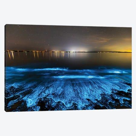 Sea Sparkle Jervis Bay Canvas Print #RNS54} by Jordan Robins Canvas Art Print