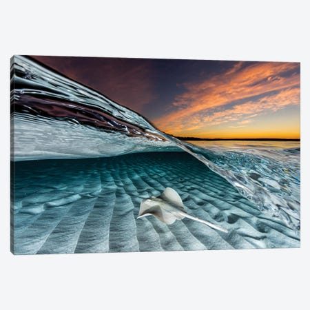 Stingaree Sunset Canvas Print #RNS58} by Jordan Robins Canvas Artwork