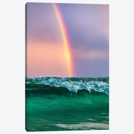 Beneath The Rainbow Vertical Canvas Print #RNS6} by Jordan Robins Canvas Wall Art