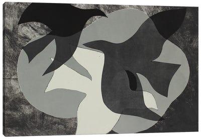 Dove Composition II Canvas Art Print