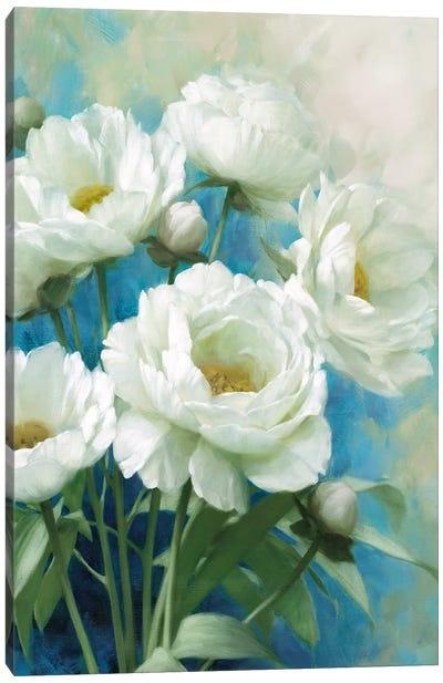 Holland Spring II Canvas Art Print