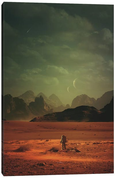 In Order To Understand The World Canvas Art Print
