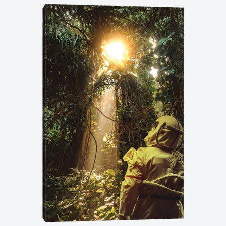 Every dreamer knows V2. Canvas Print #ROH129} by Rob Hakemo Canvas Art