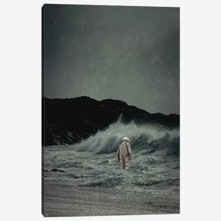 Drifter Canvas Print #ROH14} by Rob Hakemo Canvas Art Print