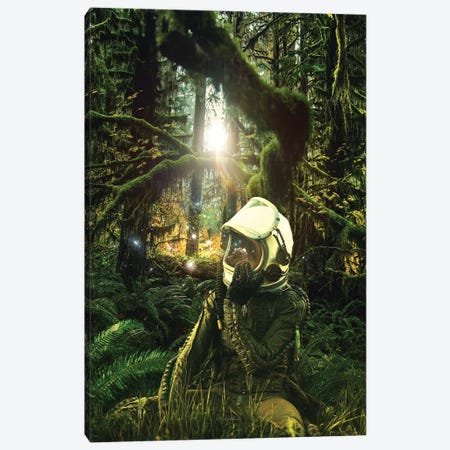Take The Trails Canvas Print #ROH158} by Rob Hakemo Canvas Print