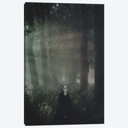 Forest King Canvas Print #ROH20} by Rob Hakemo Canvas Art Print