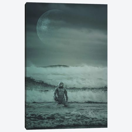 Stranded Canvas Print #ROH33} by Rob Hakemo Canvas Artwork