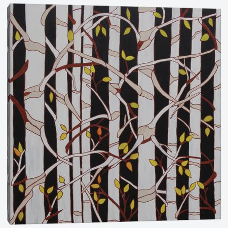 Birch Trees Canvas Print #ROL3} by Rachel Olynuk Canvas Art