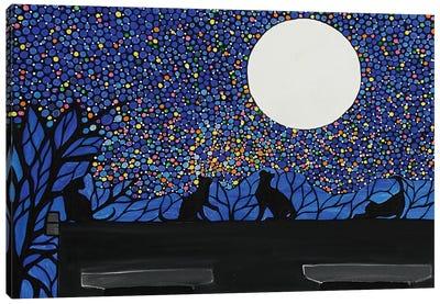Cats Chasing Fireflies Canvas Art Print