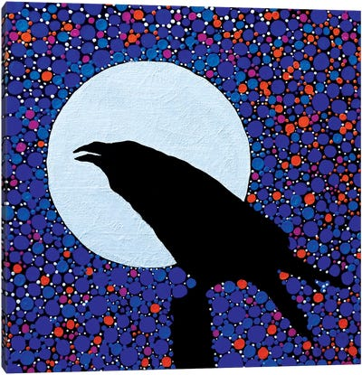 Raven's Magic Canvas Art Print