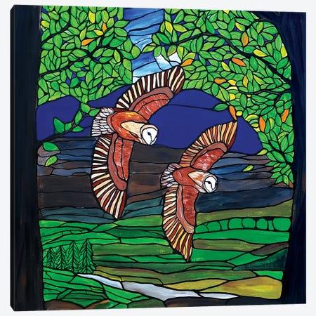 Barn Owls Flight Canvas Print #ROL80} by Rachel Olynuk Canvas Art Print