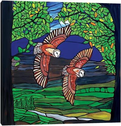 Barn Owls Flight Canvas Art Print