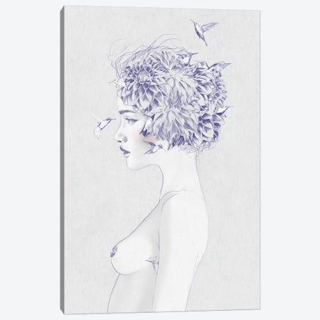 Dahlia I Canvas Print #ROM31} by Jenny Rome Canvas Print