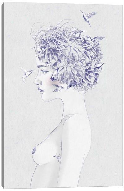 Dahlia I Canvas Art Print