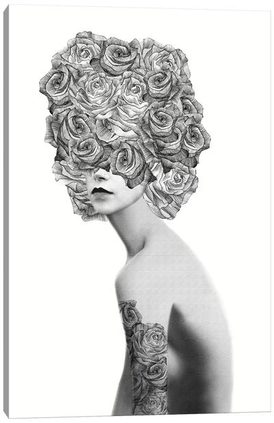 Rose I Canvas Art Print