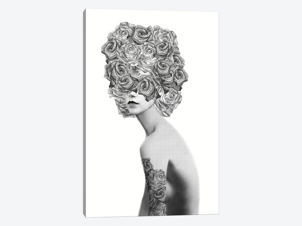 Rose I by Jenny Rome 1-piece Canvas Artwork