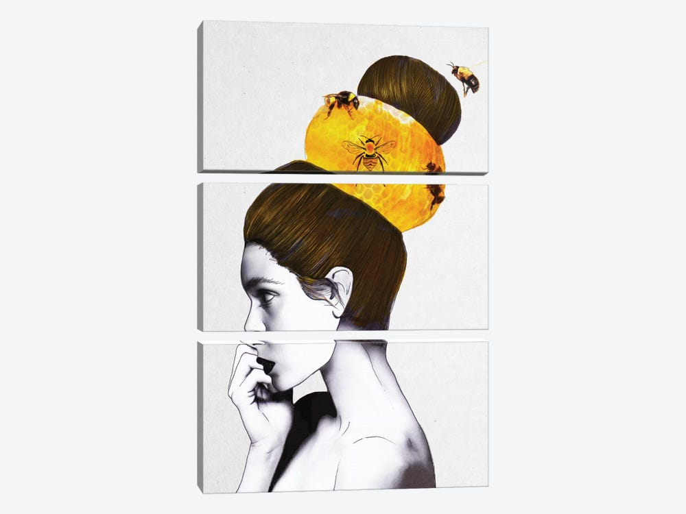 Beehive by Jenny Rome 3-piece Canvas Wall Art