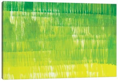 Grass Minis XXIII Canvas Art Print