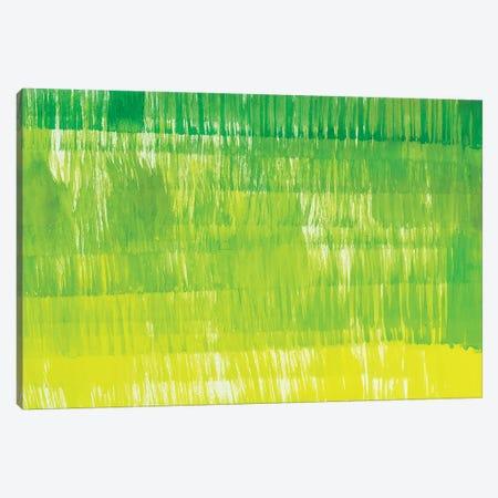 Grass Minis XXIII Canvas Print #ROO13} by Rashelle Roos Canvas Print