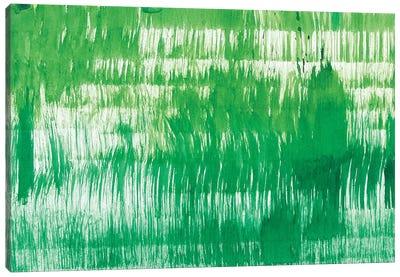 Grass Minis XV Canvas Art Print