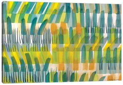 Iowa Hills Canvas Art Print