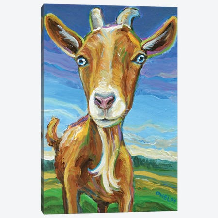 Lillie the Goat Canvas Print #RPH100} by Robert Phelps Canvas Print