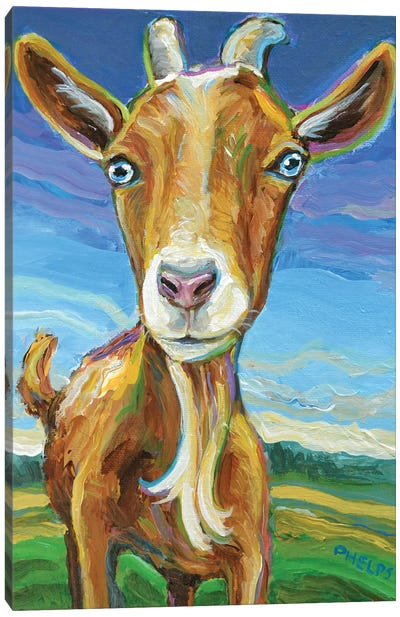 Lillie the Goat Canvas Art Print