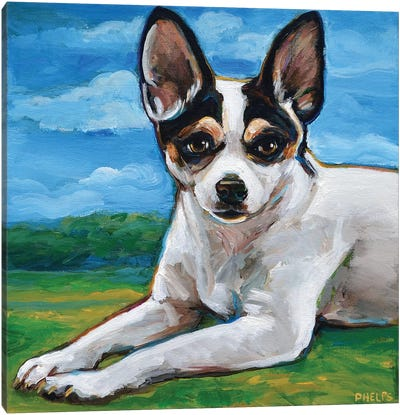 Rat Terrier Canvas Art Print