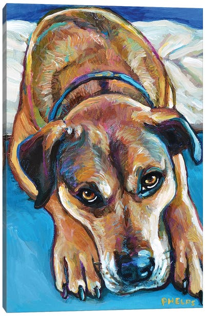 Sienna the Mastiff Mix Canvas Art Print