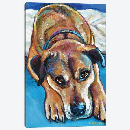 Sienna the Mastiff Mix Canvas Print #RPH107} by Robert Phelps Canvas Wall Art